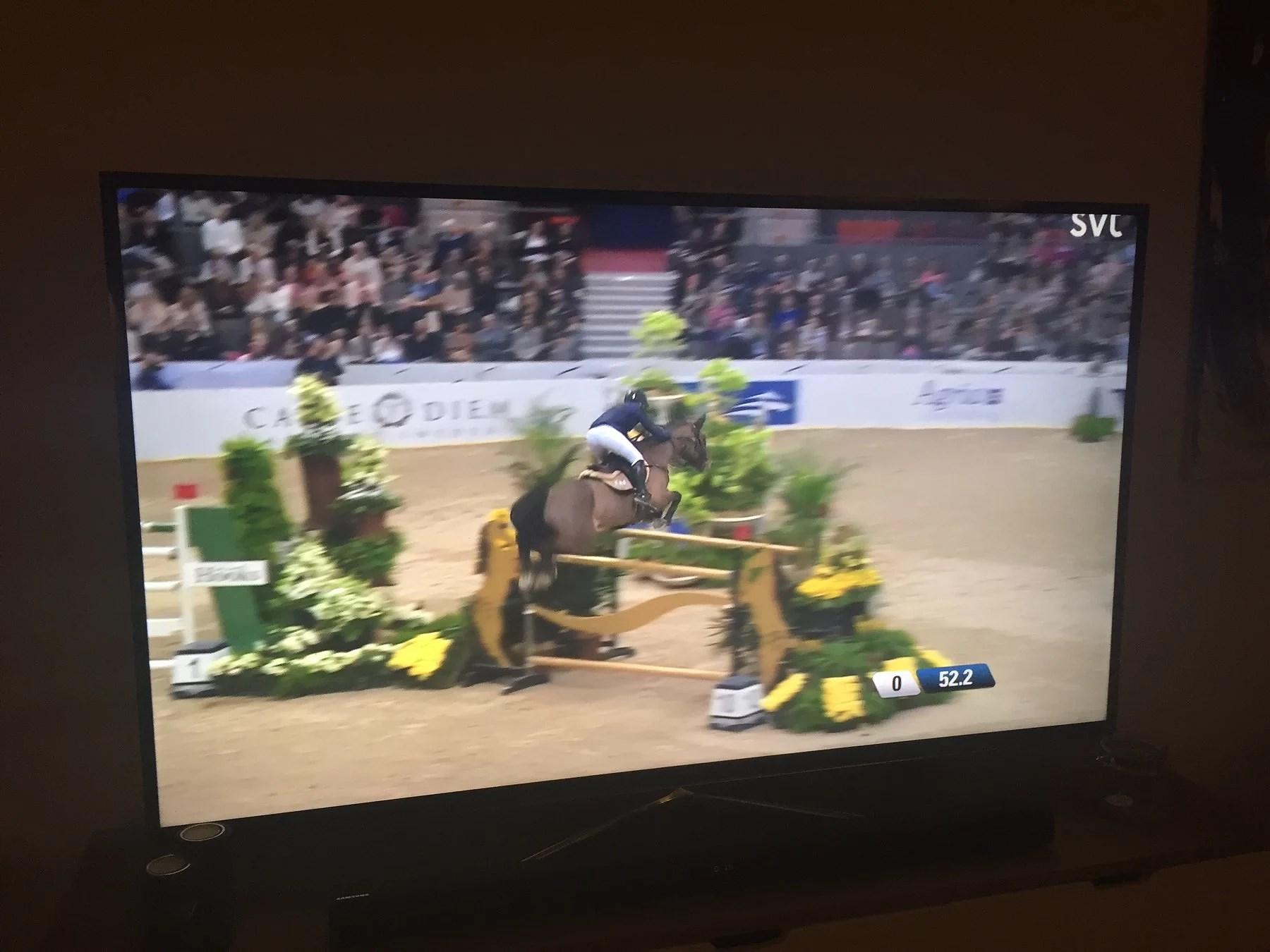 Myser med hästar