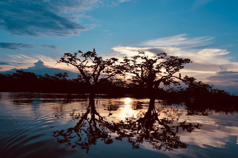 Amazonas part 3