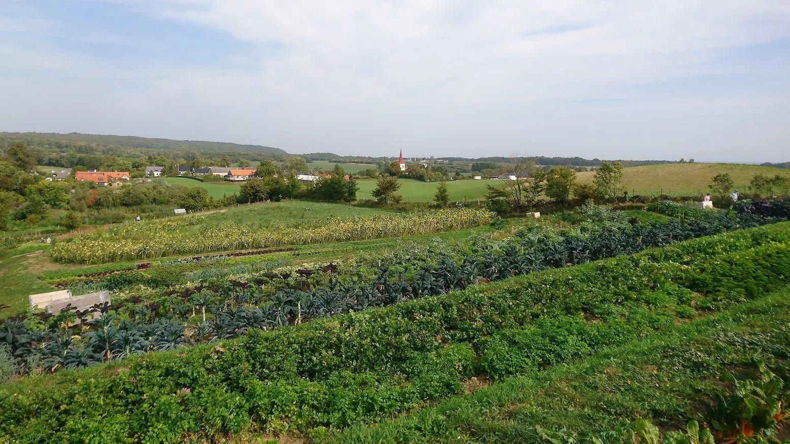 Ett besök på Mandelmanns trädgårdar