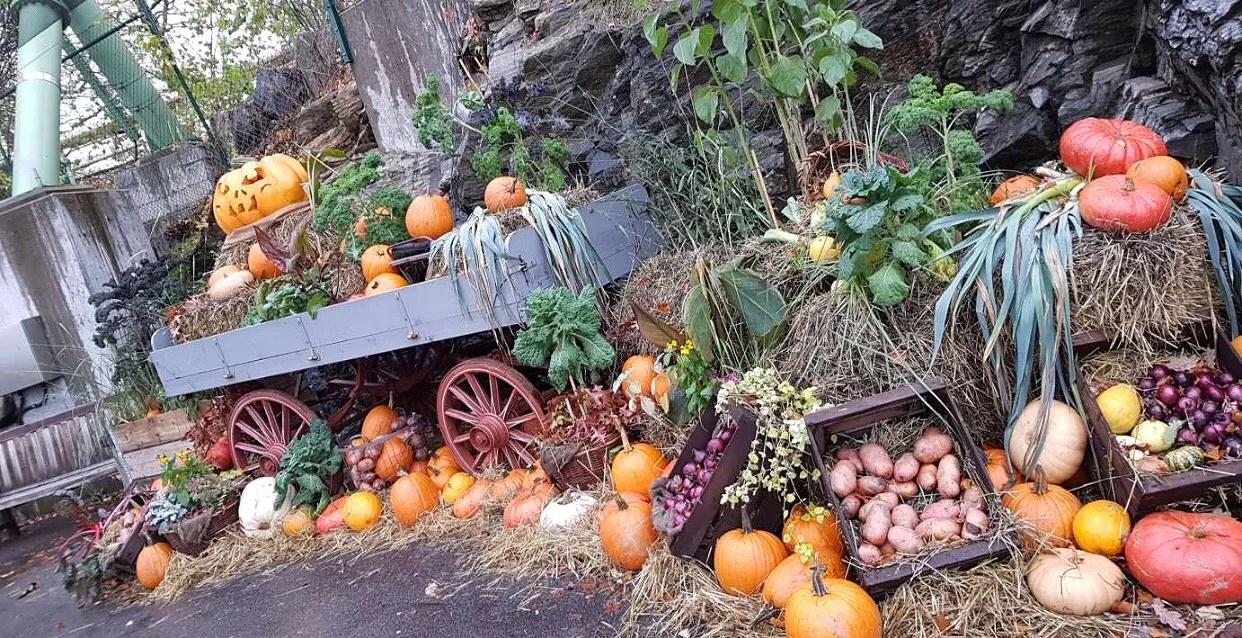 Halloween på Liseberg 🎃