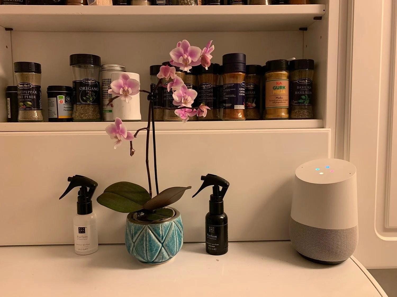 En hjälpreda i köket