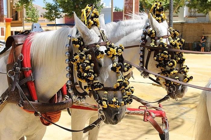 Reportaje fotográfico de la Feria de Jerez