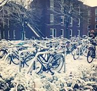parcheggio biciclette del campus