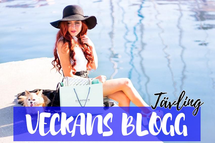 Vill du synas på min blogg?