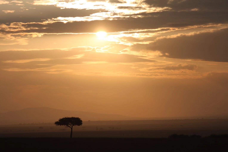 Maasai Mara - Dag 2