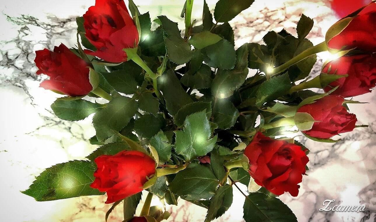 Glad alla hjärtans dag ♡