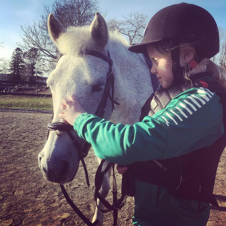 En mjuk hästmule och ljudet av frustningar