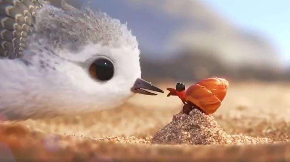 Disney Pixar Animated Short FIlm - Piper