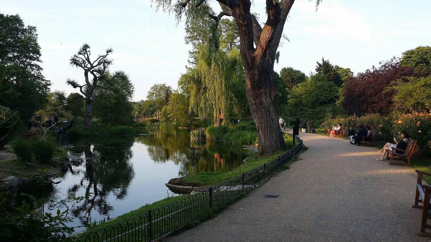 Regents Park i juni