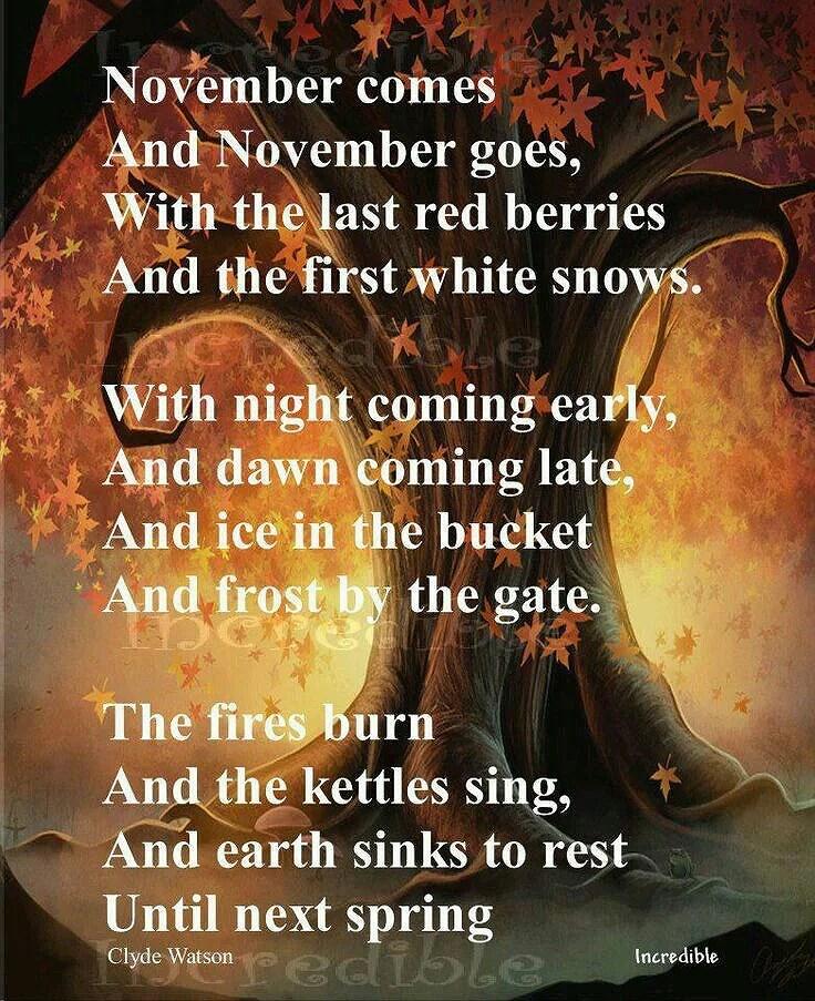 Salut novembre!!😘