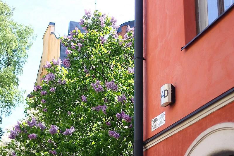 Summertime in Helsinki