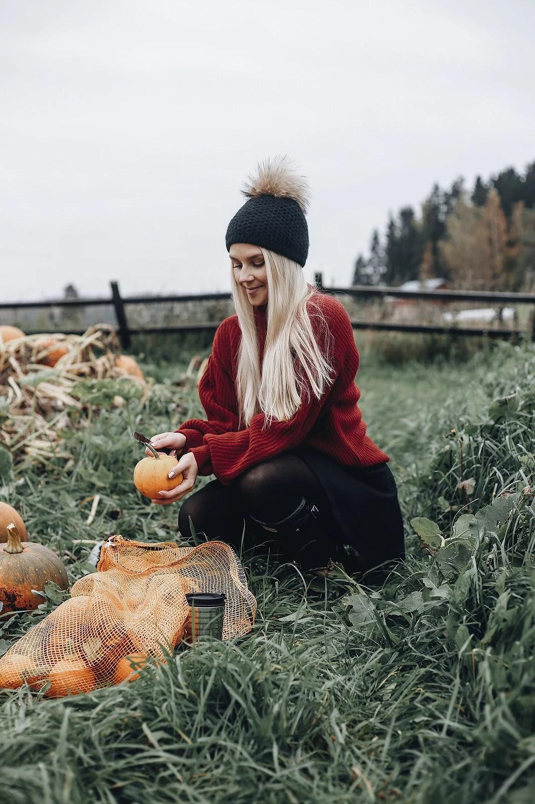 pumpkinpatch5@johannaturpeinen