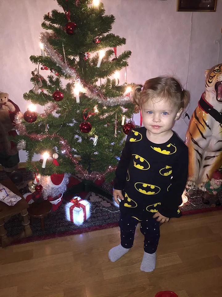 """Juldagen - """"dansk julmat"""" för oss!"""