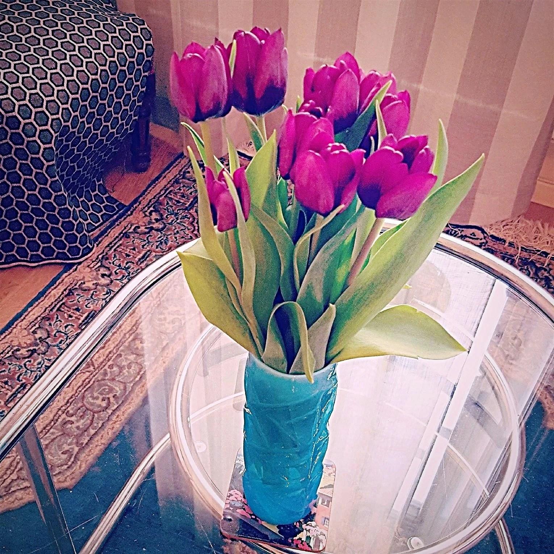 Ta in våren