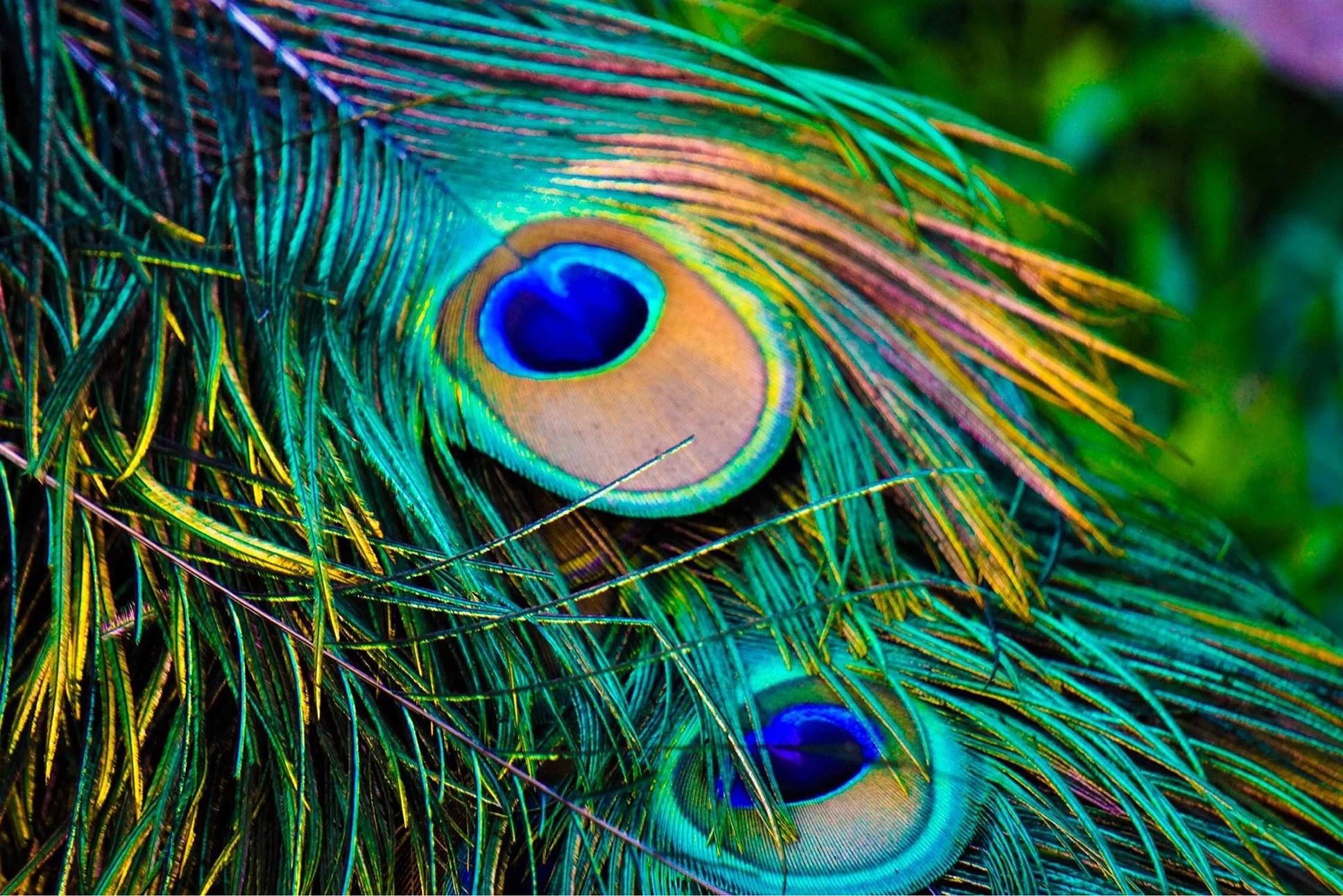 Colorful - Bali 2018