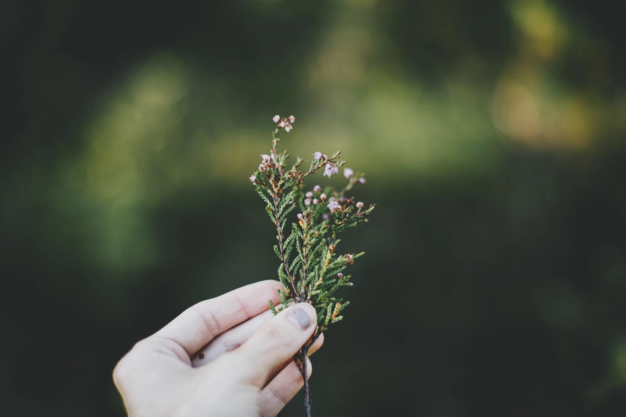 I naturen