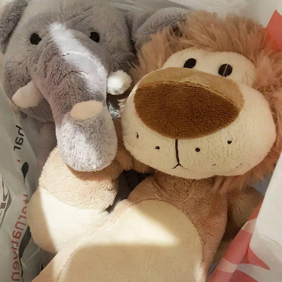En elefant och ett lejon till fasters böna.