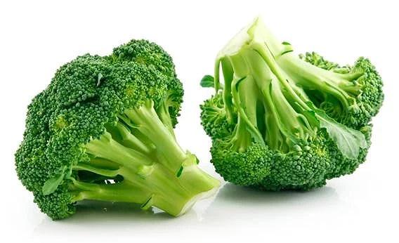 120302_SCIENTIST_broccoli.jpg.CROP.rectangle3-large