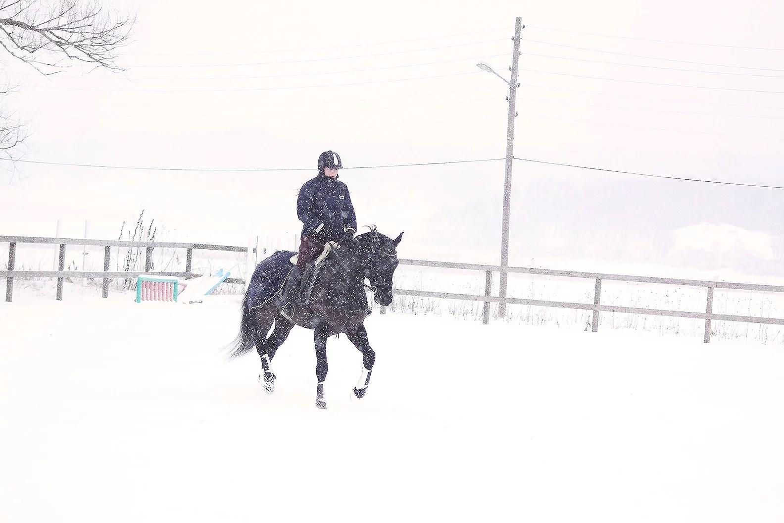 snömos