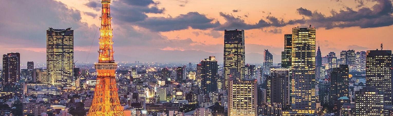 Risk Statement of Premier Capital Group Portfolio Mngt Tokyo, Japan