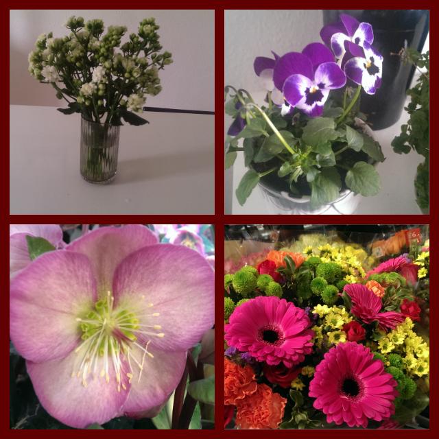 Man giver ikke en blomsterdekoratør blomster....