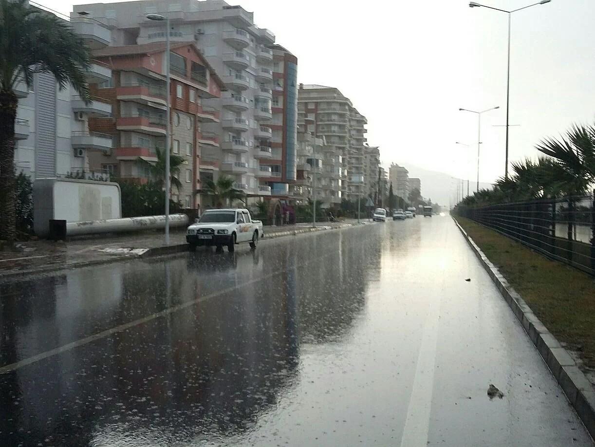 Wet kinda morning