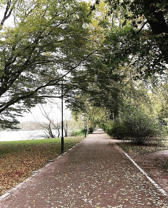 Autumn feels