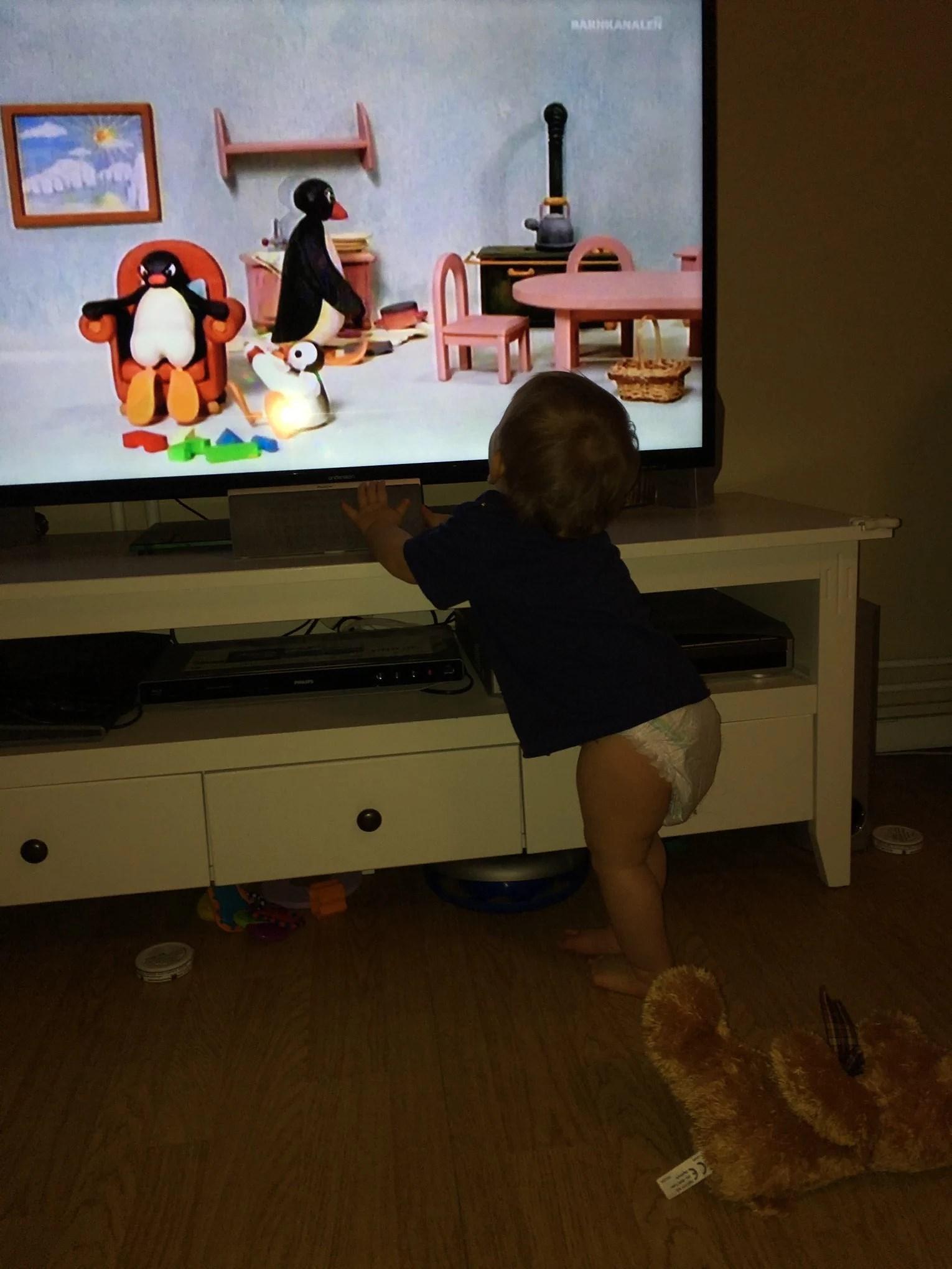 Pingu nya favoriten