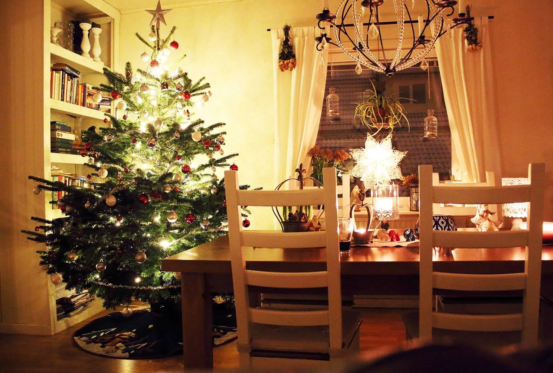 Välkommen in julgranen!