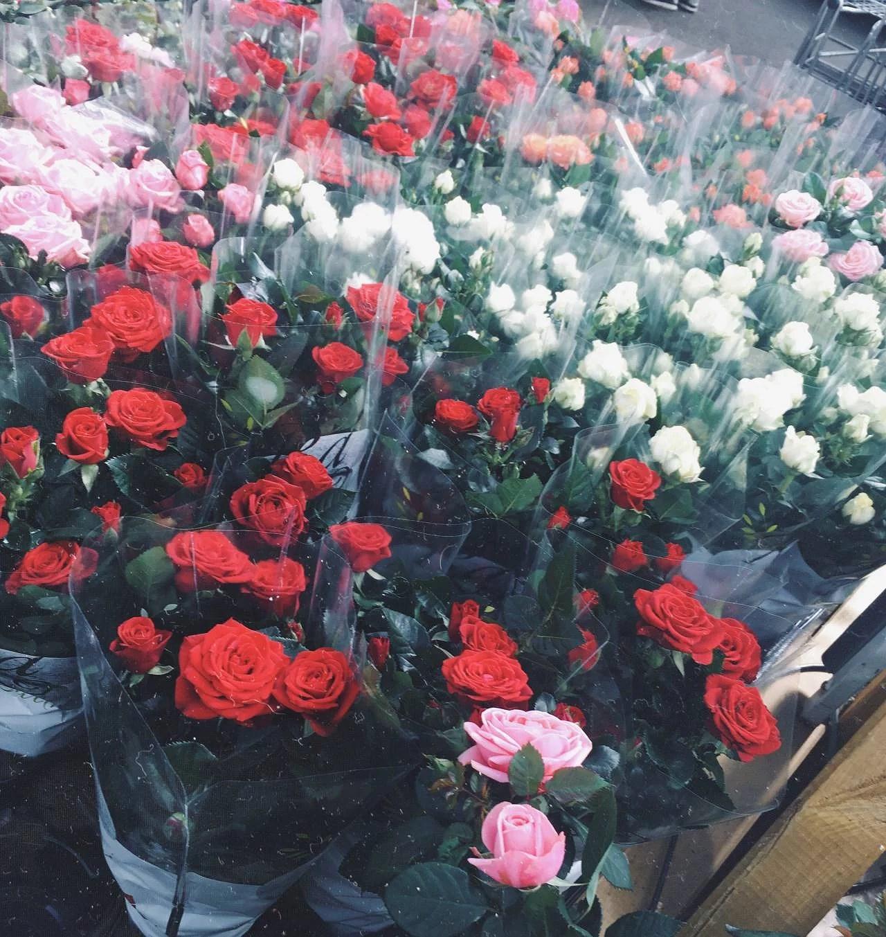 Flowers through my phone