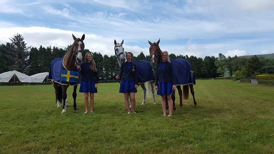Final horse inspection •PICS•