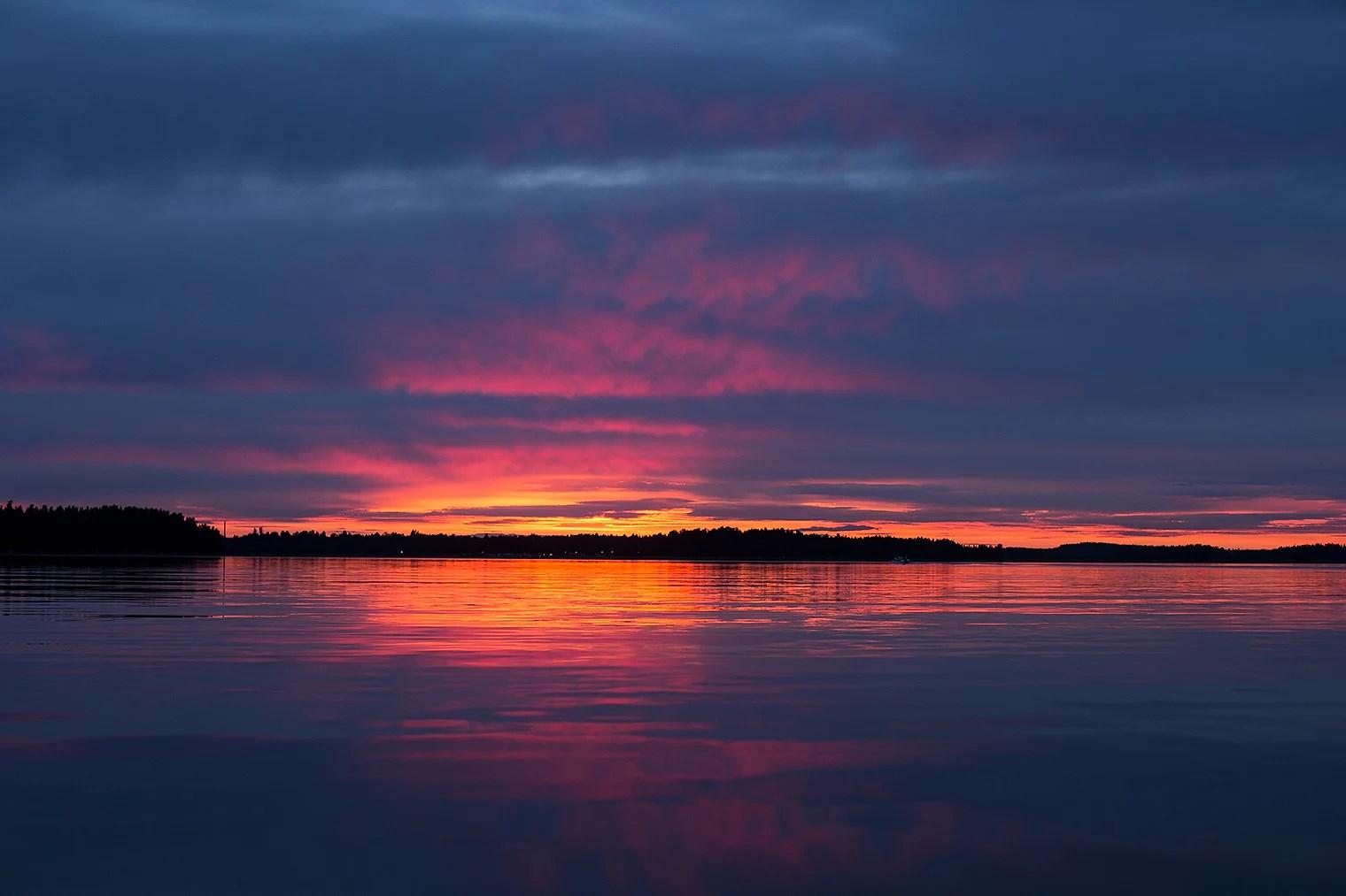 Solnedgång och svanar