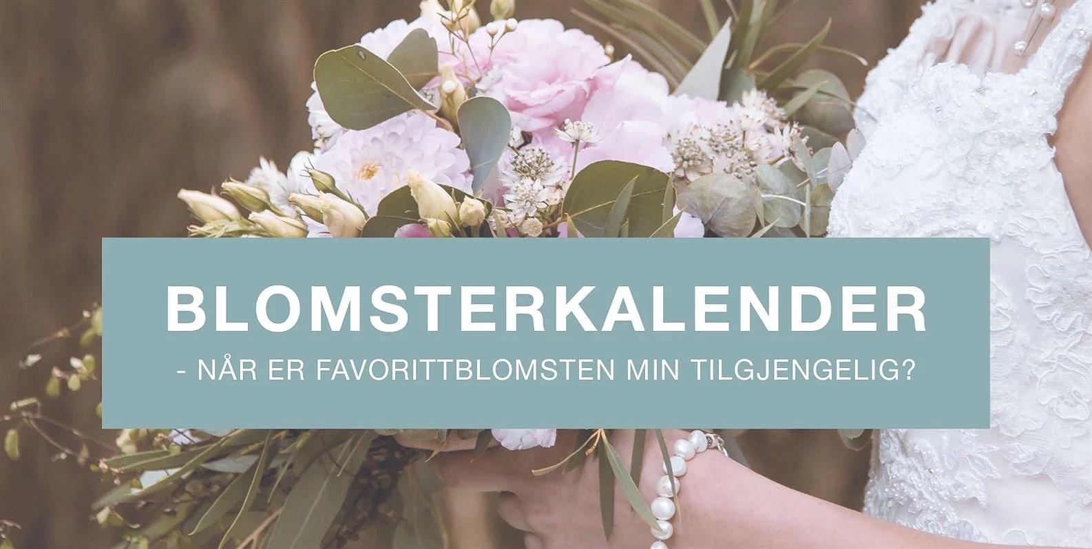 Blomsterkalender - Når er favorittblomsten min tilgjengelig?