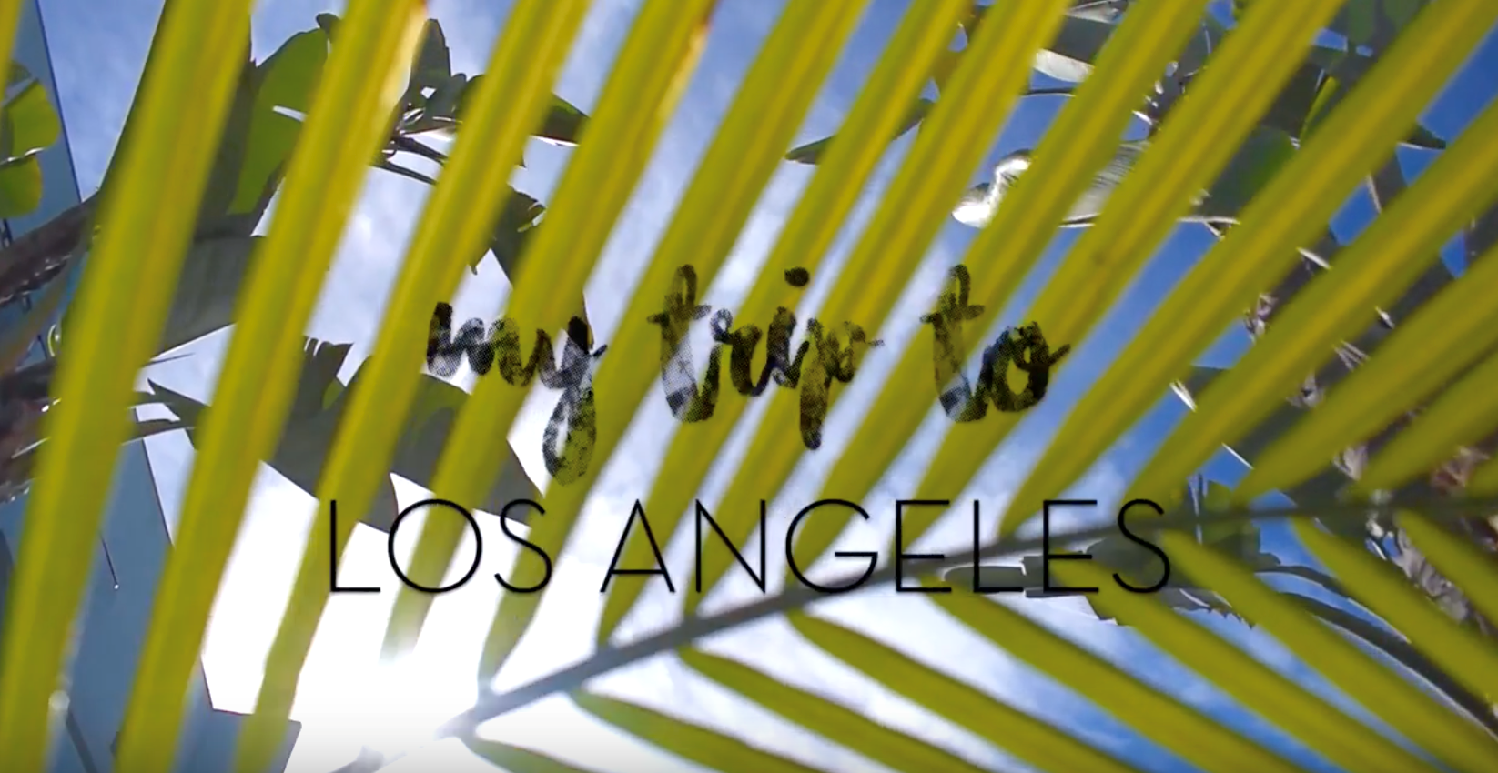 VIDEO FROM LOS ANGELES