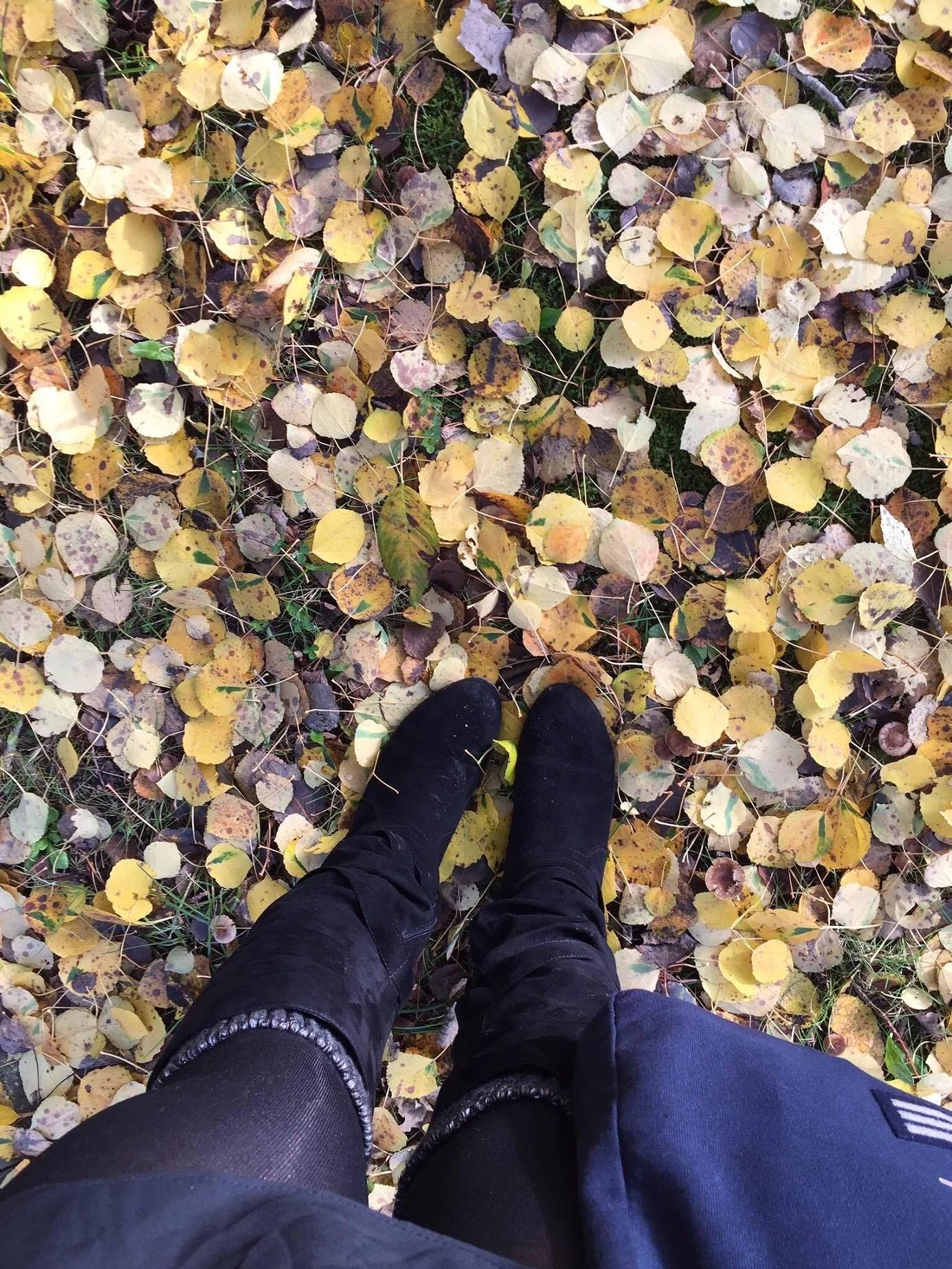 Fall You're So Beautiful!