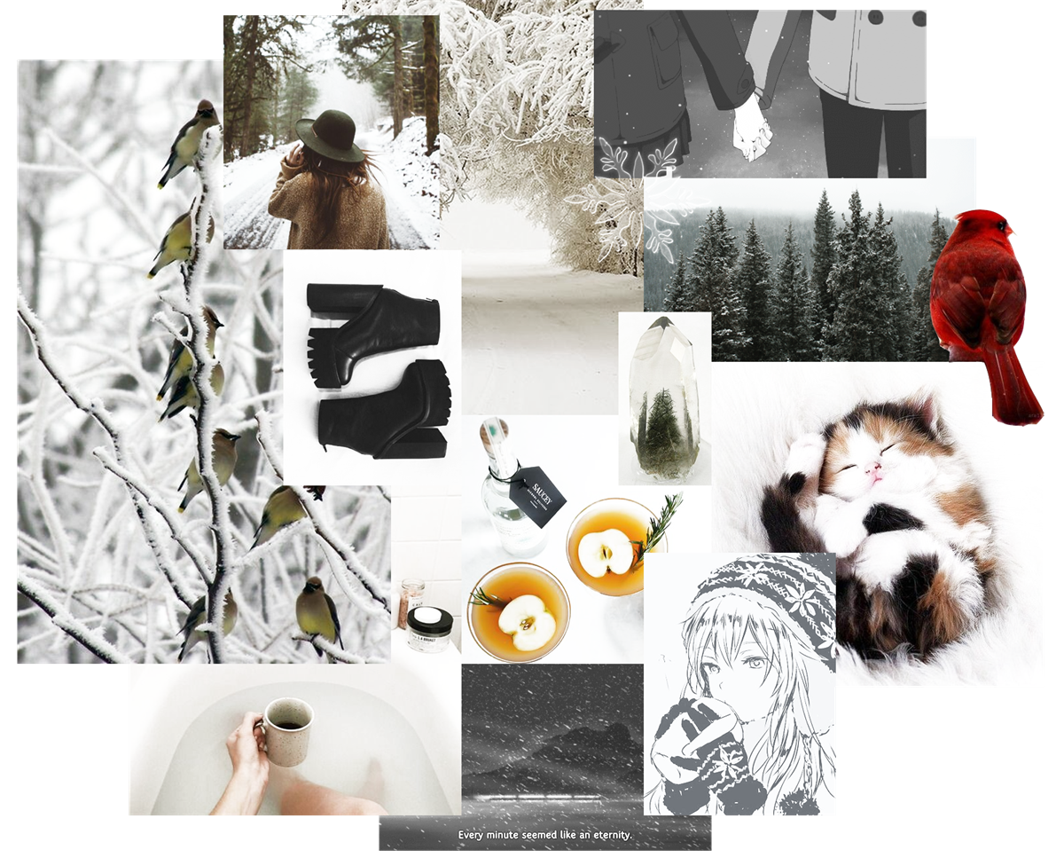WINTER MOOD BOARD