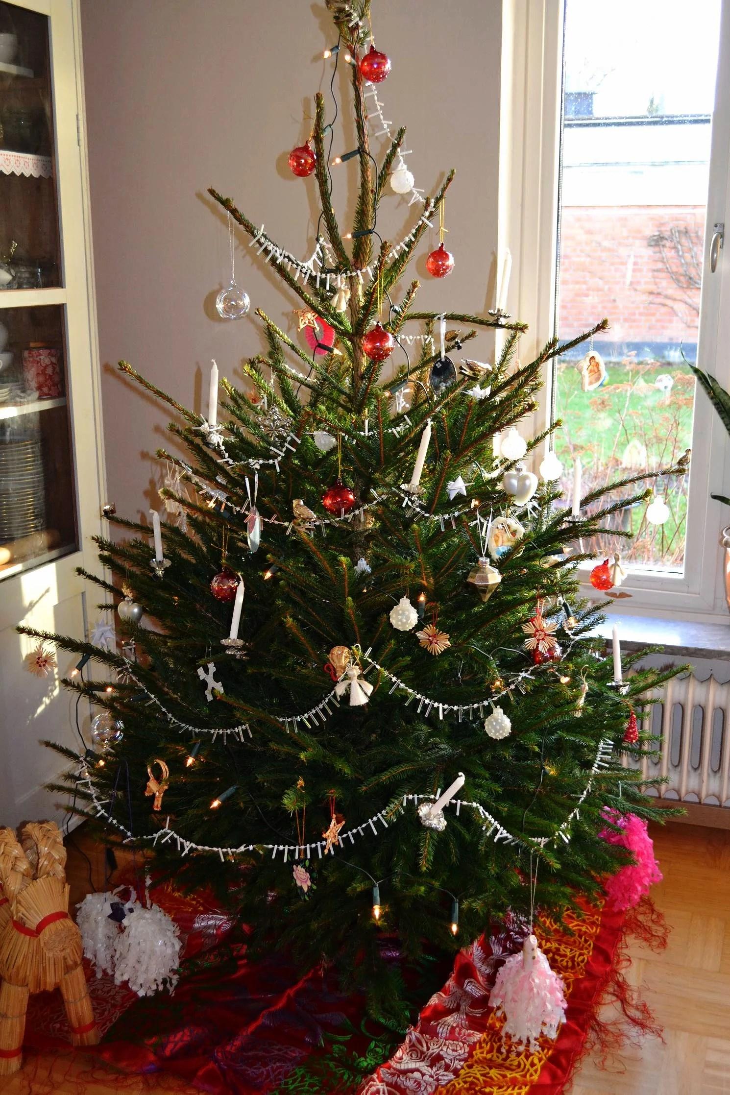 foton från julen