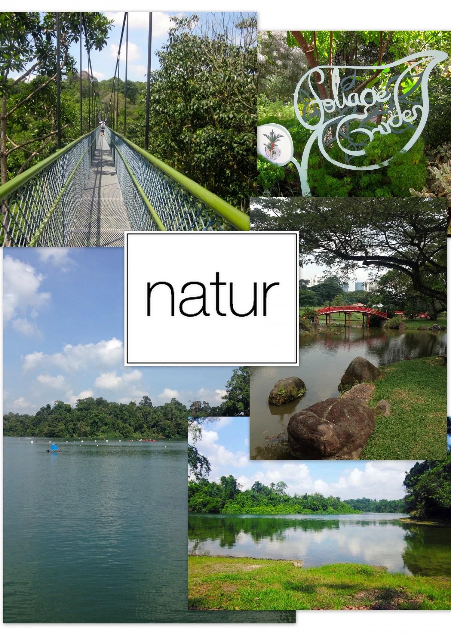singapore guide1
