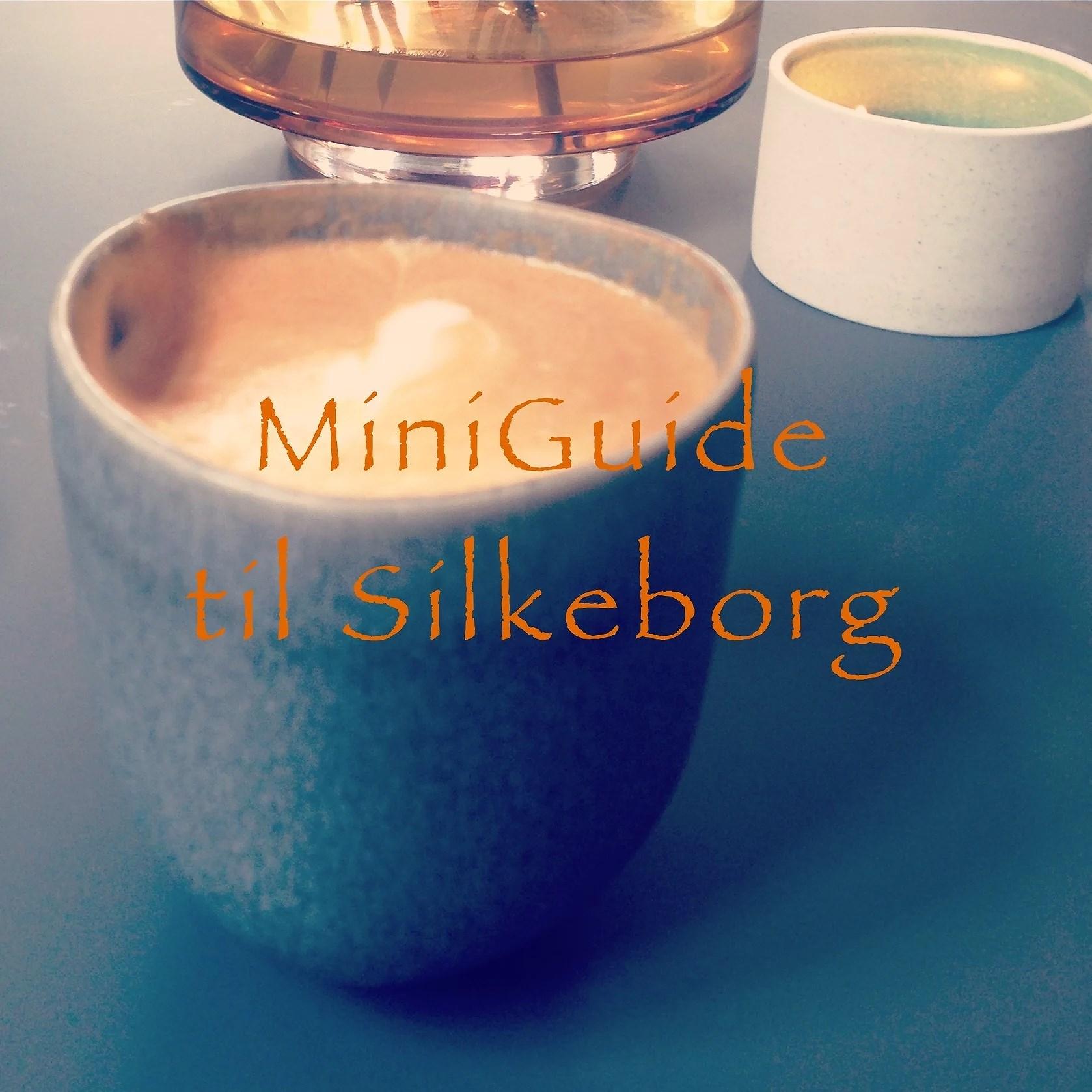 Mini guide til Silkeborg