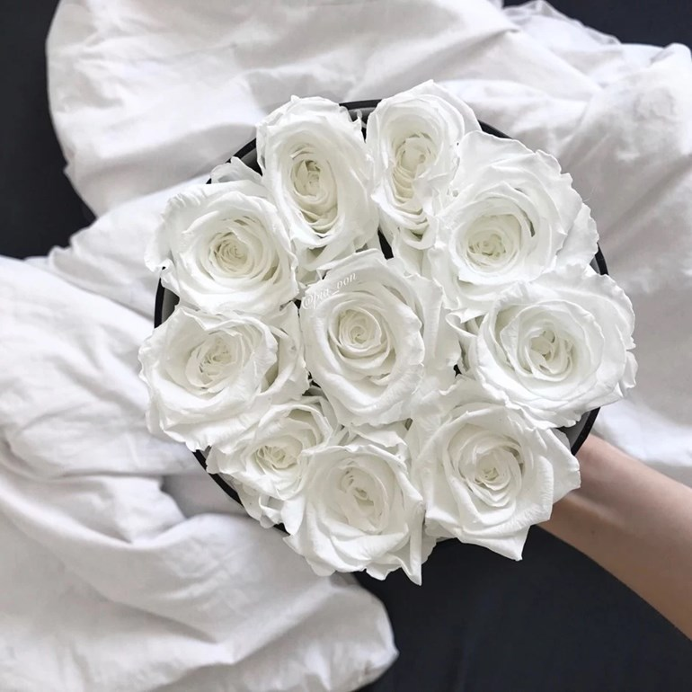 grace flowerbox piavon blog. Black Bedroom Furniture Sets. Home Design Ideas