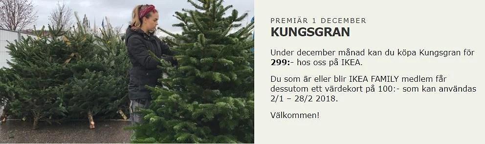 Äkta julgran 299:- + värdekort på 100 kr