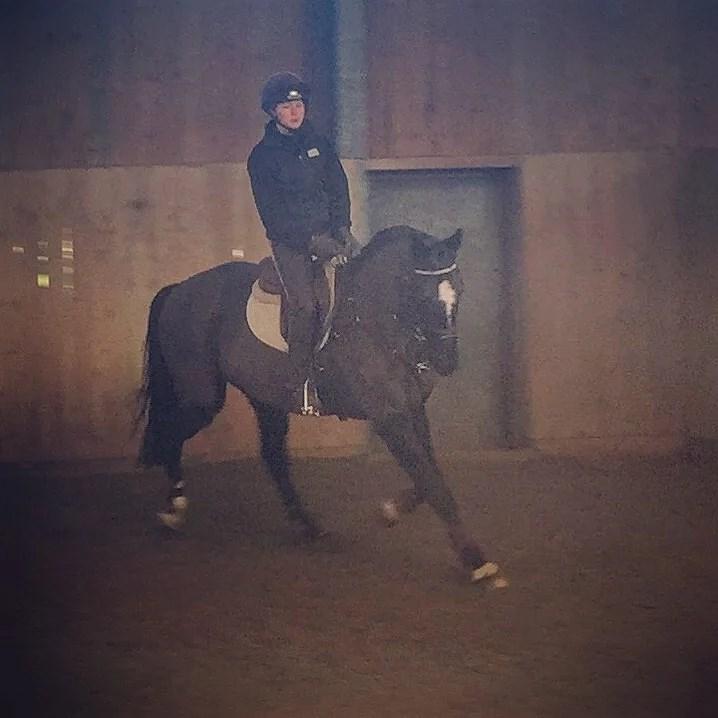 Hoppträning på en OS häst