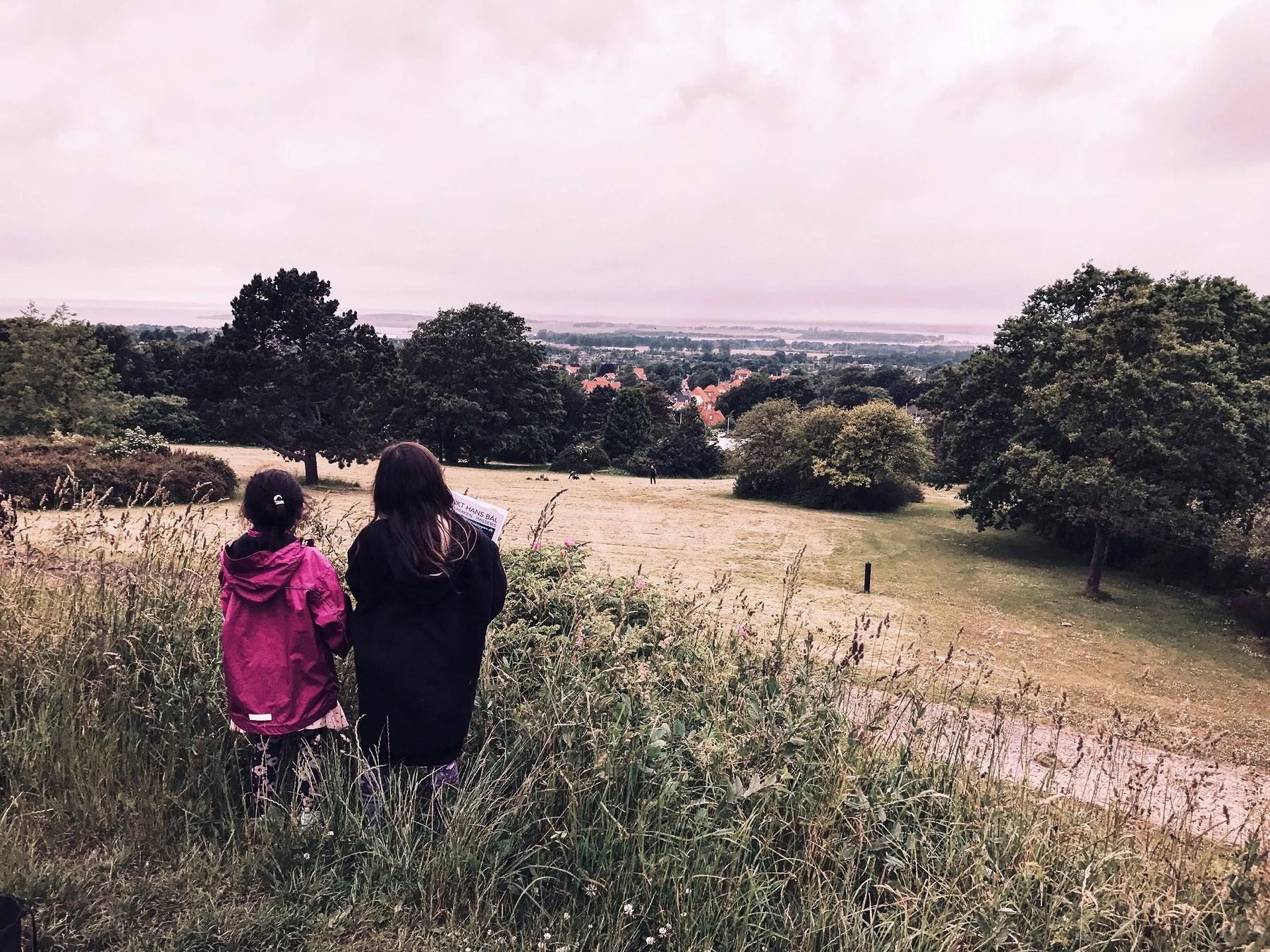 Snapshots from Denmark