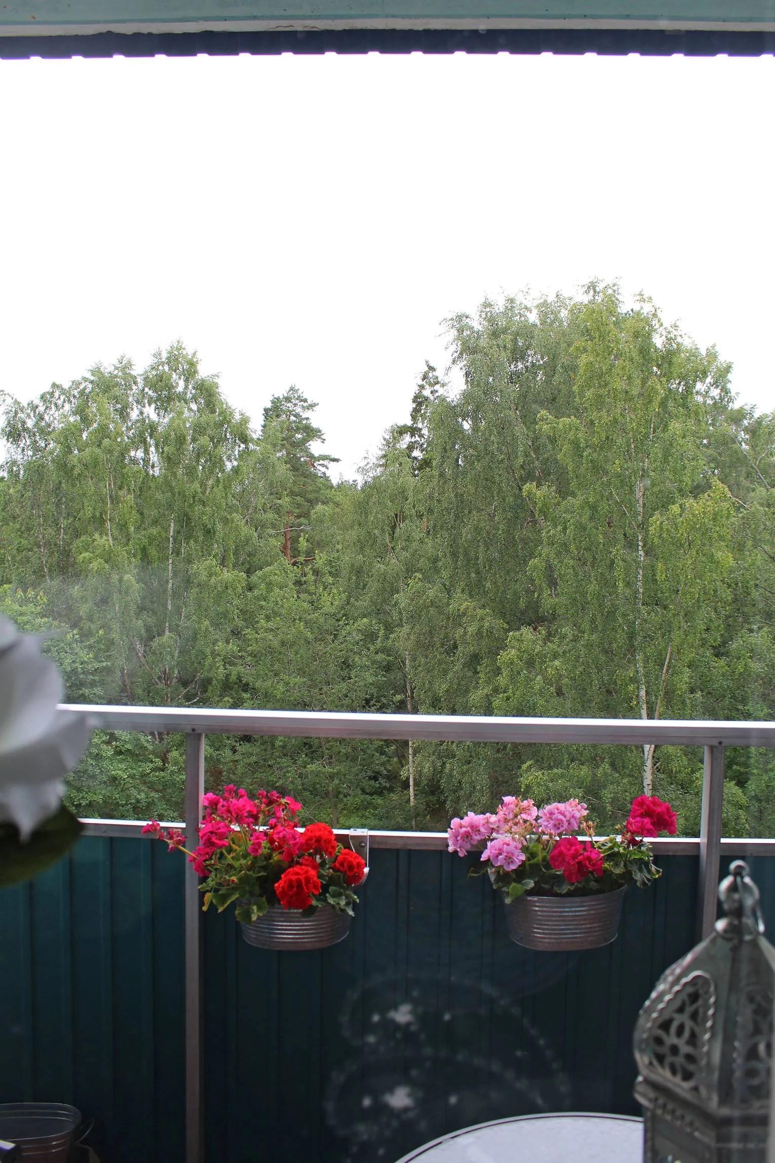 grå, regnig förmiddag