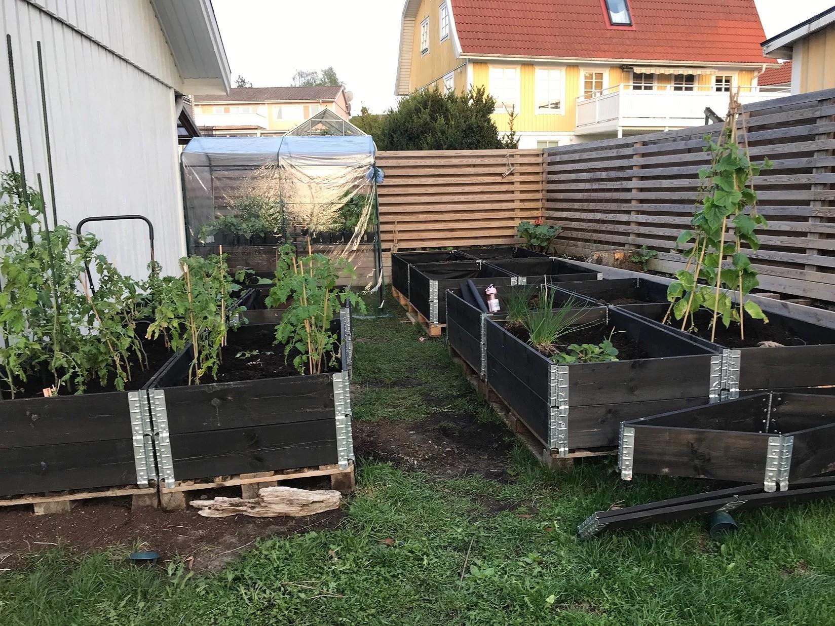 En dag i trädgården