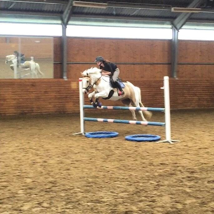 Hästarna V.20