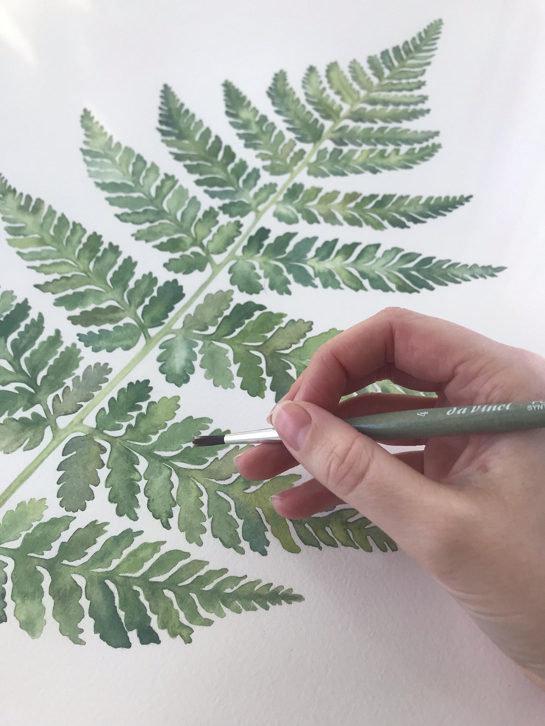 Ormbunke akvarell. Fern watercolor. Botaniskt print.