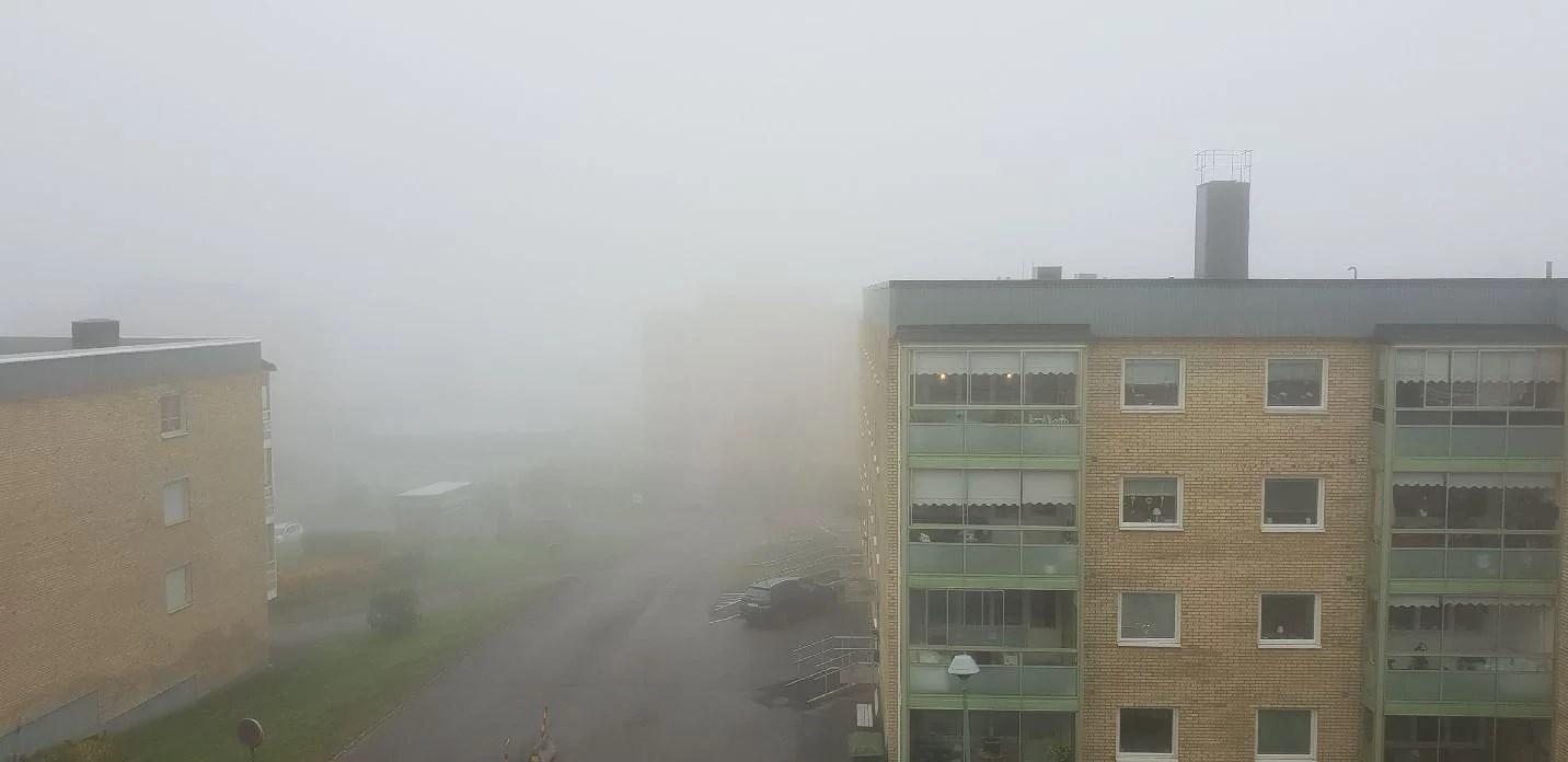 Dimma och mardrömmar