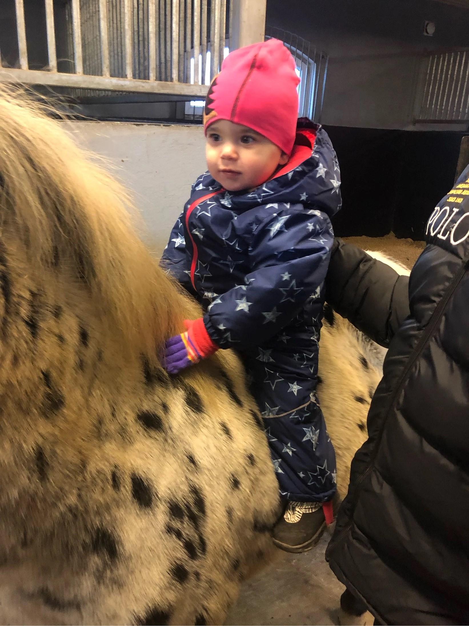 Hästtjej?
