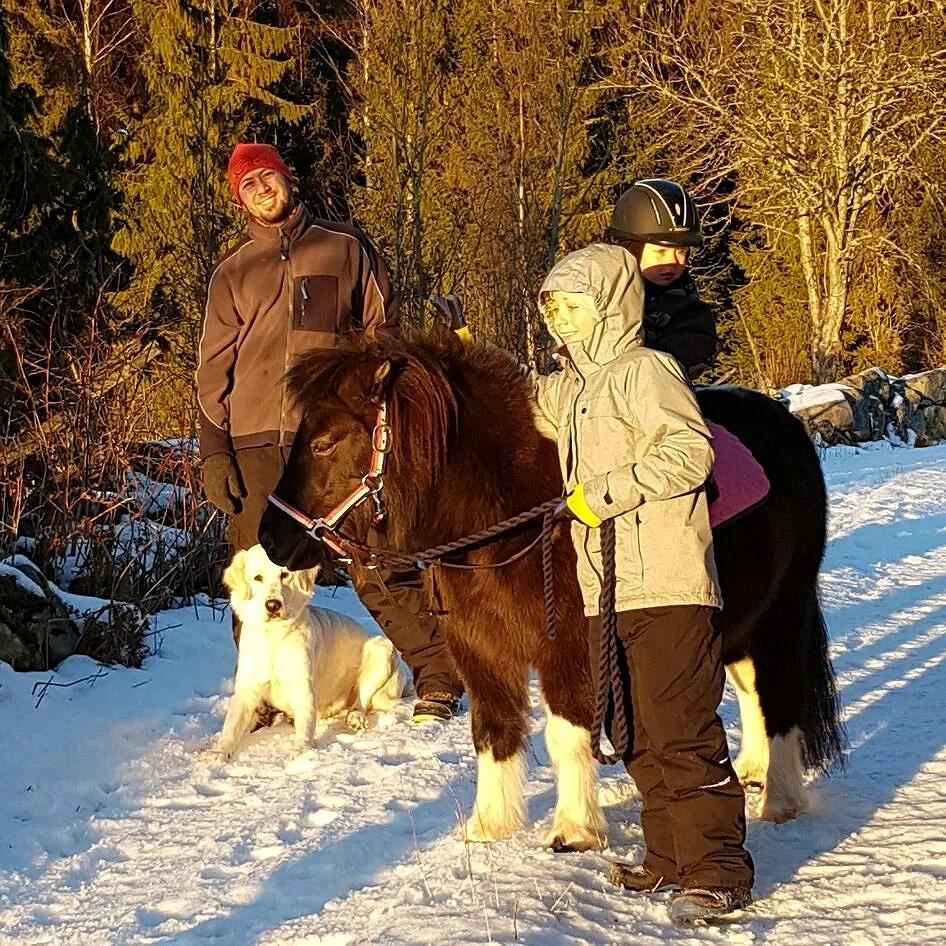 Nackspärr å ponnymys